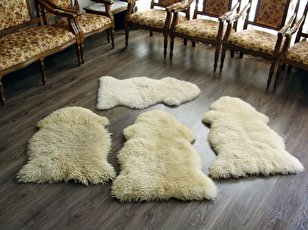 54067 117 - طریقه خشک کردن پوست گوسفند